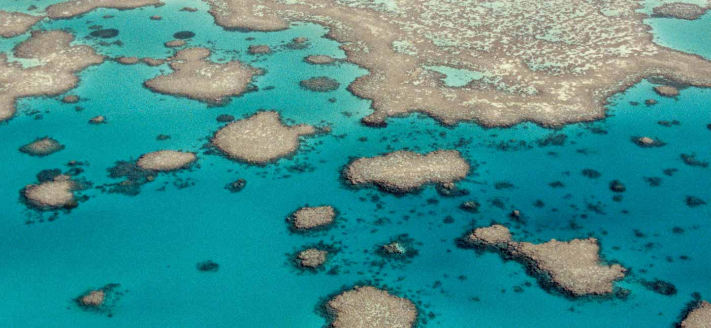 Aerial view of Great Barrier Reef.