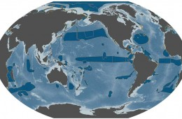 World globe showing ocean areas.