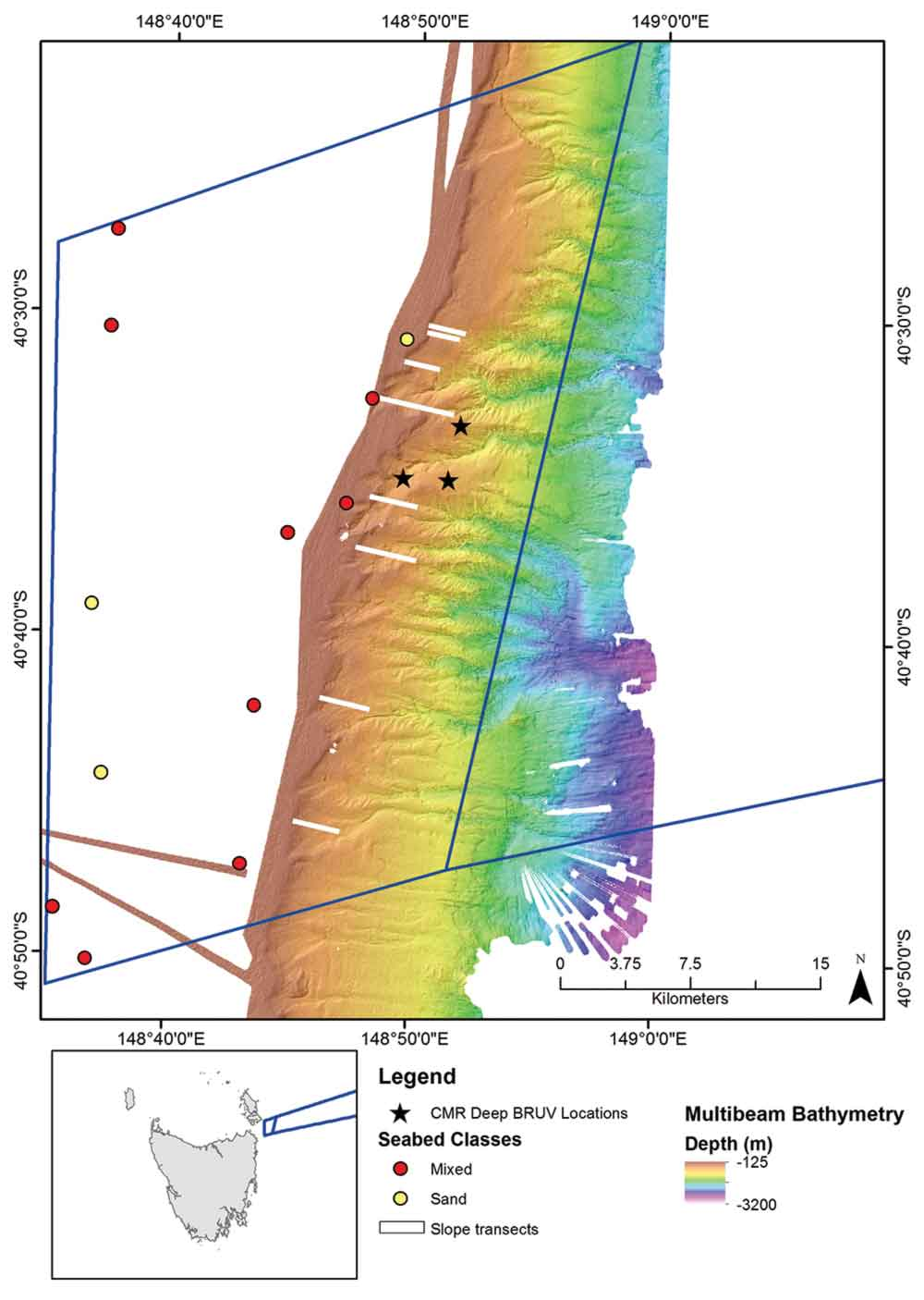 Diagram of multibeam mapping results.