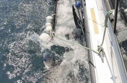 Shark tagging with a cradle along-side boat.